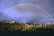 Full Rainbow Fall, Denali National Park, Alaska