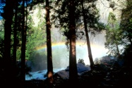 Misty Rainbow, Yosemite National Park, Californi