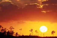 Setting Sun over the Swampland, Everglades Natio