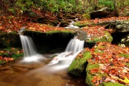 Wesser Creek in Autumn, Nantahala National Fores